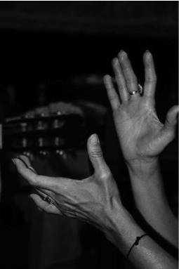 Manos Flamencas.