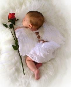 Angel bebé con rosa