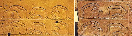 Bailarinas acróbatas. Capilla Roja de Hatshepsut en Karnak (Egipto). XVIII Dinastía (1479-1457 a.C)